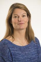 Dr Stefania PROIETTI